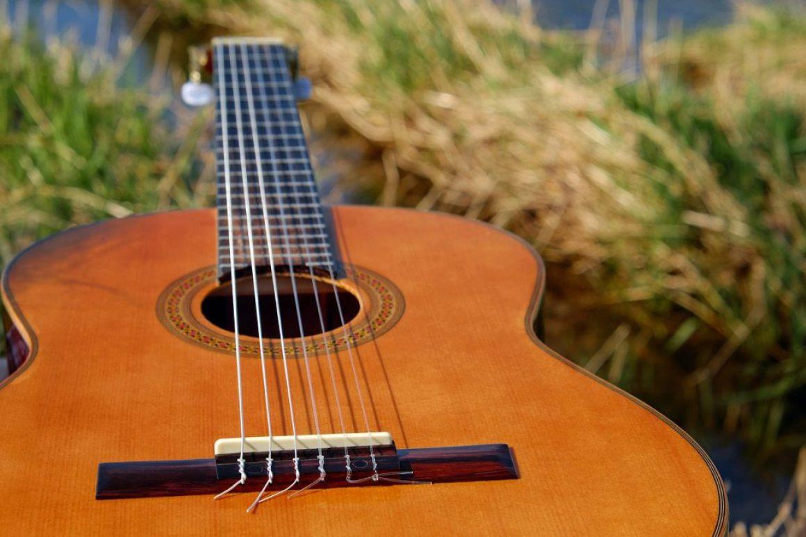 Música Folclórica en Vivo
