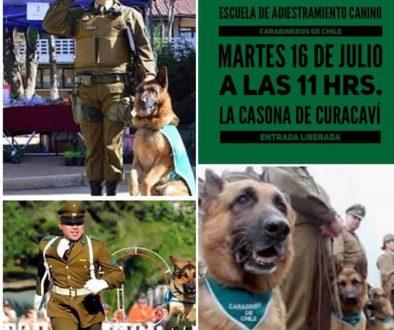 Presentacion de Escuela de Adiestramiento Canino